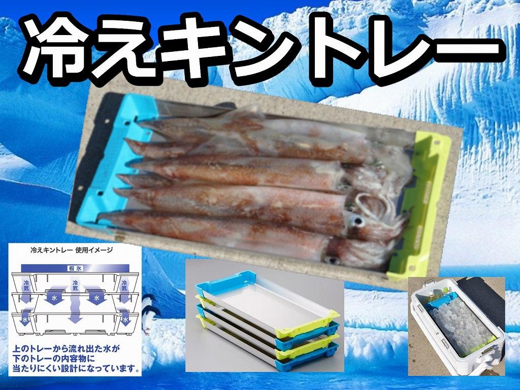 冷えキントレー! LLサイズ追加! イカを色を変えずにキンキンに冷やせます!SSS/SS/S/M/L/LLサイズ  シマノ以外のクーラーでも使えます!  シマノ