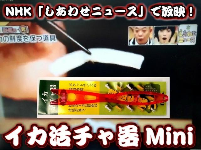 イカ活チャ器Miniサイズ! (イカ活き絞め) 函館漁師のプロの技  これを使うと甘味が違う!コリコリ感が違う!