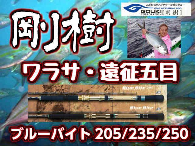 剛樹 Gチーム・ブルーバイト 青物竿  205/235/250! (送料無料)