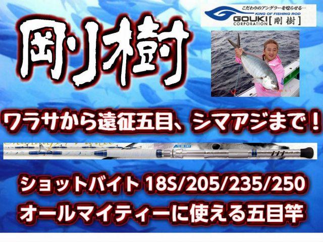 剛樹 ショットバイト ワラサから遠征五目までカバーできる青物用コマセ竿!  (送料無料)