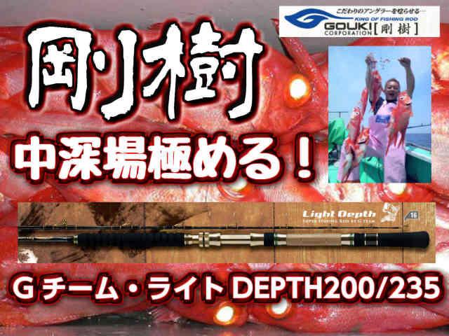 剛樹 Gチーム・ライトDEPTH アカムツに人気です! (送料無料)