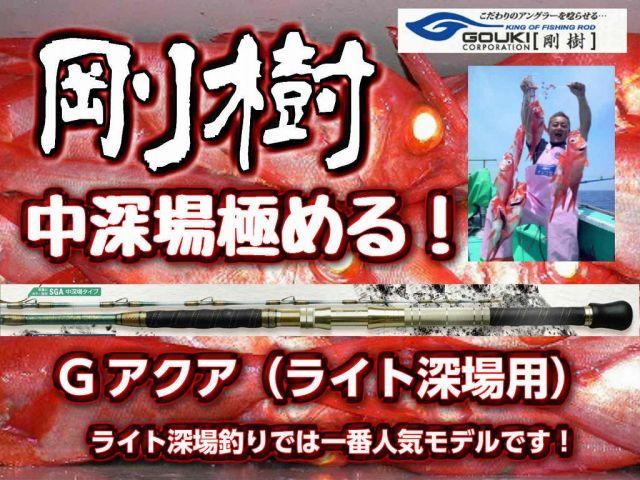 剛樹 ライト深場用 スーパーGアクア  超感覚中深場モデル!  (送料無料)