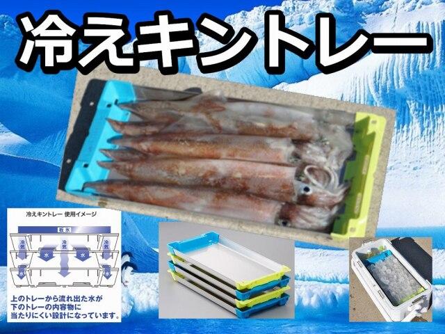 冷えキントレー! LLサイズ追加! イカを色を変えずにキンキンに冷やせます!SSS/SS/S/M/L/LLサイズ  シマノ以外のクーラーでも使えます!  シマノ  ※中型 個別送料対応商品