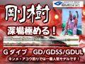 剛樹 キンメ・アコウ深場用 Gダイブ  (送料無料)