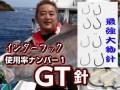 インターフック GT針(クエ型伊勢尼針)  22〜35号  大物泳がせ釣りで一番使われている針