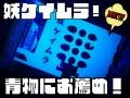 魚が寄る! 紫外線反応!妖ケイムラシール  カツオ・メジ必見! コマセビシ