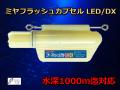 高輝度LED! ミヤマエ フラッシュカプセル DXタイプ キンメ・アコウ釣り用