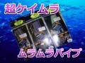 超ケイムラ ムラムラパイプ  アカムツ、太刀魚、メジカツにお薦め!