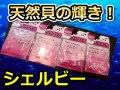 天然貝の輝き! シェルビー  カツオ・シマアジ・マダイ・ワラサ  タコ型/丸型/パイプ型  HIROKA
