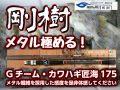 剛樹 Gチーム・カワハギ匠海 175 異次元のメタル感度! (送料無料)