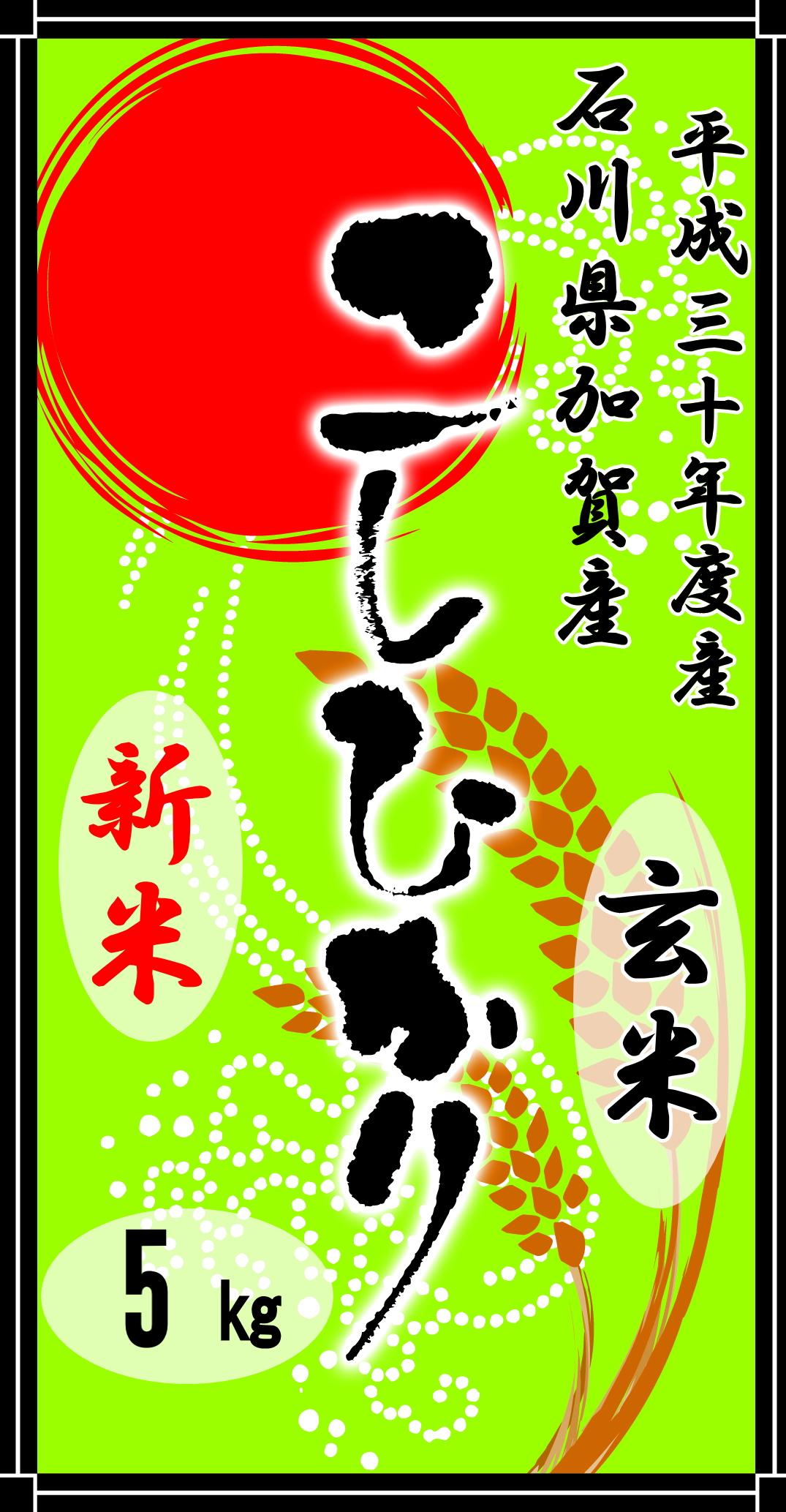 平成30年度産石川県加賀産こしひかり5kg(玄米)