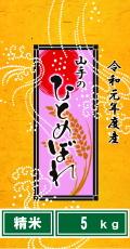 令和元年度産山手のひとめぼれ5kg(精米)