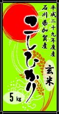 平成29年度産石川県加賀産こしひかり5kg(玄米)