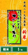 """平成29年度産""""新米""""石川県加賀産こしひかり5kg(精米)"""