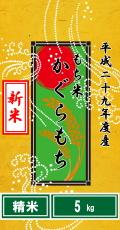 """平成29年度産""""新米""""もち米 カグラモチ5kg(精米)"""