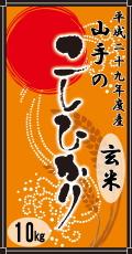 平成29年度産山手(やまて)のコシヒカリ10kg(玄米)