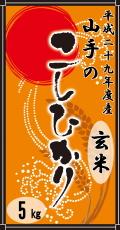 平成29年度産山手(やまて)のコシヒカリ5kg(玄米)