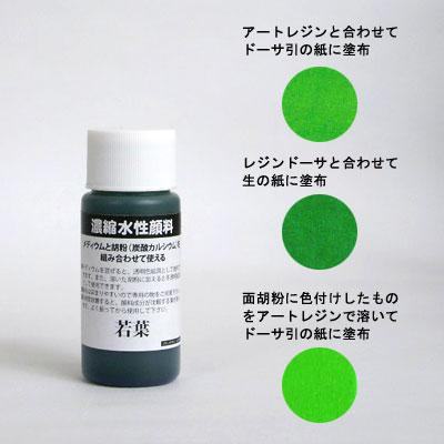 濃縮水性顔料 若葉 30ml
