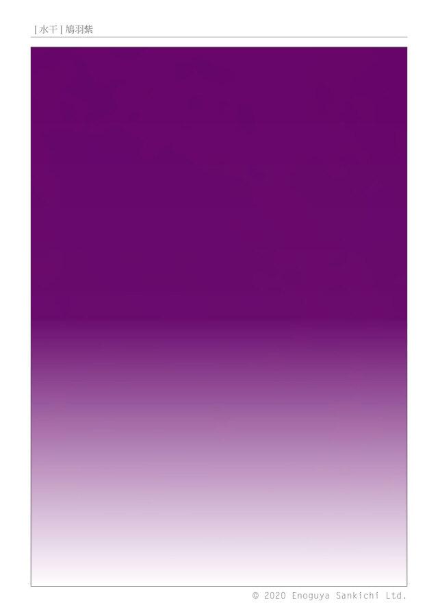 [水干] 鳩羽紫