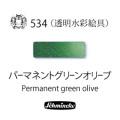 シュミンケ ホラダム透明水彩 パーマネントグリーンオリーブ(534)  5mlチューブ