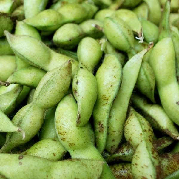 枝豆(バラ)