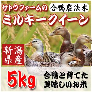 【29年新潟産】合鴨農法ミルキークイーン5Kg【生産直売】