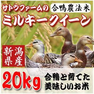【29年新潟産】合鴨農法ミルキークイーン20Kg(5kg×4)【生産直売】【送料無料】