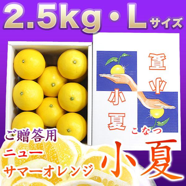 土佐小夏(高知県産)・山波(やまなみ)・ダイヤ・一般ご贈答用・小箱(約2.5kg)・Lサイズ【送料無料】