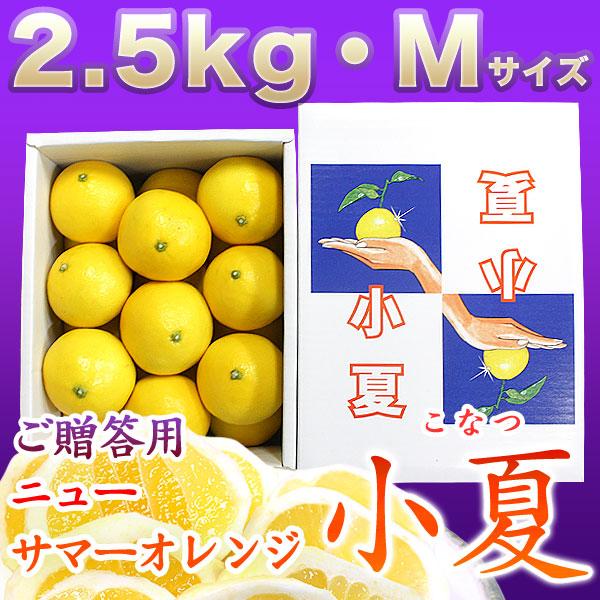 土佐小夏(高知県産)・山波(やまなみ)・ダイヤ・一般ご贈答用・小箱(約2.5kg)・Mサイズ【送料無料】