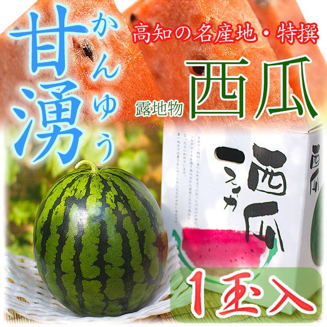 高知県産・特撰高級西瓜(スイカ)・甘湧(かんゆう)・露地物(トンネル栽培含む)・秀品・2Lサイズ・1個