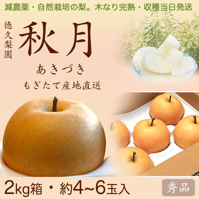 【木なり完熟・もぎたて】秋月(あきづき)梨(なし)・秀品・2kg・約4~6玉入り・厳選農家の産地直送