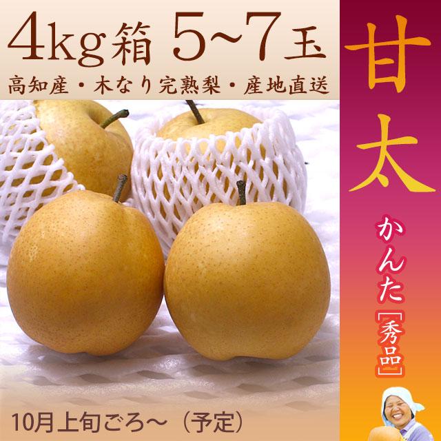 甘太(かんた)梨(なし)・秀品・4kg・5~7玉入・木なり完熟・【産地直送】