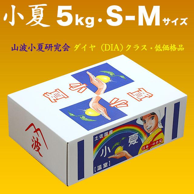 土佐小夏・山波小夏研究会(やまなみ)・ダイヤ(廉価品)・大箱(約5kg)・S-Mサイズ【送料無料】