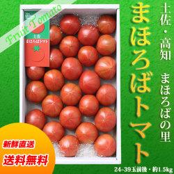 土佐まほろばトマト(秀品)1.5kg箱(24~39玉前後入り)