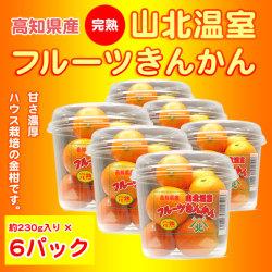 金柑(キンカン)・高知県産・完熟・山北温室フルーツきんかん(ハウス栽培品)約230g×6パックセット