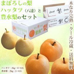 【送料無料】幻の梨・ハッタツ(八達)と豊水梨のセット・A