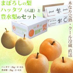 幻の梨・ハッタツ(八達)と豊水梨のセット・A