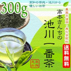【土佐茶】高知の池川茶・農薬不使用・一番茶緑茶(煎茶)300g【送料無料】