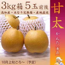 甘太(かんた)梨(なし)・秀品・3kg・5玉入・木なり完熟・【産地直送】