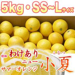 【限定販売】土佐小夏(とさこなつ)・高知県産・特価わけあり品・大箱(約5kg)・SS~Lサイズ【送料無料】