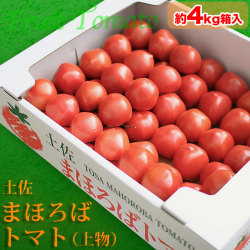 土佐 まほろばトマト 約4kg箱入り