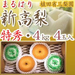 【産地直送】針木産の新高梨(にいたかなし)・高知市針木梨組合(まるはり)・特秀品(特撰ご贈答用)・約4kg・4玉入