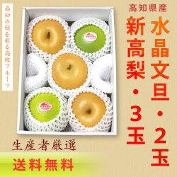 【送料無料】高知県産・新高梨3玉+水晶文旦2玉・詰め合わせセット