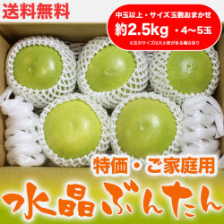 水晶文旦(高知県産)・特価ご家庭用・約2.5kg・(中玉以上・4〜5玉)【送料無料】