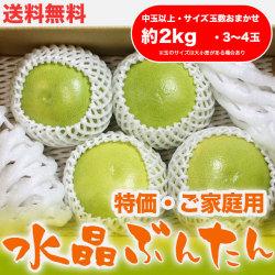 水晶文旦(高知県産)・特価ご家庭用・約2kg・(中玉以上・3~4玉)【送料無料】
