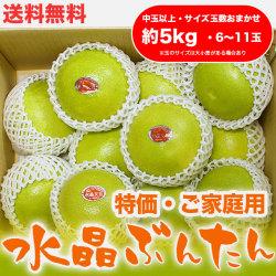 水晶文旦(高知県産)・特価ご家庭用・約5kg・(中玉以上・6~11玉)【送料無料】