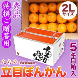 【送料無料】立目(たちめ)ぽんかん(高しょう系・岡山系)秀品・特撰ご贈答用・5kg箱・2Lサイズ