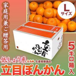 【送料無料】立目(たちめ)ぽんかん(低しょう系)ご家庭用兼ご贈答用・5kg箱・Lサイズ