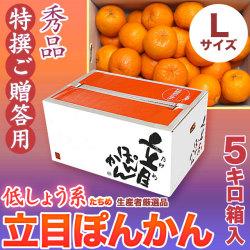 【送料無料】立目(たちめ)ぽんかん(低しょう系)秀品・特撰ご贈答用・5kg箱・Lサイズ
