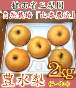 豊水梨(高知県針木産)・植田省三梨園・2kg・約3~6玉入【数量限定・産地直送】